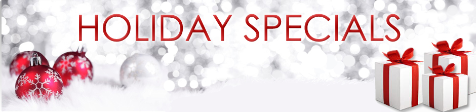 holiday special banner